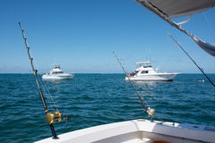 White boat makes fishing with spinning on a large sea fish in the Caribbean Sea. White boat makes fishing with spinning on a large sea fish Royalty Free Stock Photography