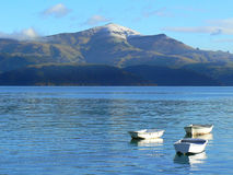 White boats. White small boats in sea harbour in Akaroa (New Zealand Stock Photos