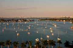 White Boats in Blue Water of Biscayne Bay Stock Photography