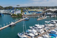 Large MArina holding many small vessels and boats close to san diego seaworld royalty free stock image