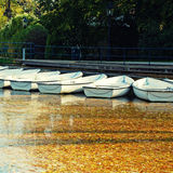 White boats on the lake in the autumn park Stock Images
