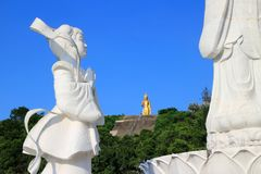 White Bodhisattva Guan Yin statue in Hat Yai municipal park, Hat Yai, Songkhla, Thailand. White statue at Guan Yin statue with the view of golden Buddha in the Royalty Free Stock Images