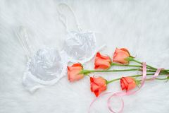 White bodice with lace on white fur. Orange roses. Fashionable c. Oncept Royalty Free Stock Photo