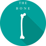 White bone on a turquoise background with shadow Stock Photo