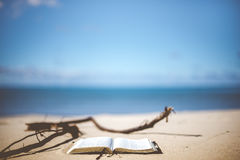 White Book on Brown Beach Sand during Daytime Royalty Free Stock Photography
