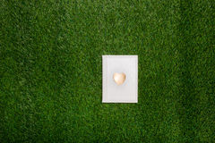 White book with gold heart lying on the grass Royalty Free Stock Images