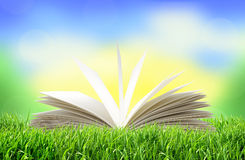 White book in green grass over bright nature Royalty Free Stock Photos