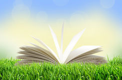 White book in green grass over bright nature Stock Image