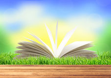 White book in green grass over nature background Stock Photo