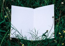 White book with green leaf. stock photo