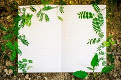 White book and leaf stock images