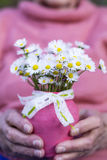 White bouquet of blooming daisies in senior woman's hands Stock Photo