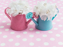 White bouquet in pink and blue flowerpots royalty free stock images