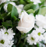 White bouquet Royalty Free Stock Photography