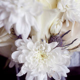 White bouquet of roses and chrysanthemums, close-up, petals Royalty Free Stock Images