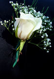 White Boutonniere Royalty Free Stock Photography