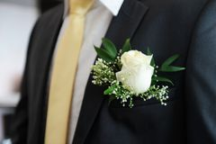White boutonniere on the suit of groom. Boutonniere on the suit of groom Royalty Free Stock Photography
