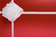 White bow(rose) Stock Photos