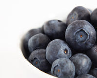 White Bowl of Blueberries Stock Photo