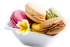 White bowl with colored macaroons. A white bowl with colored macaroons Royalty Free Stock Images