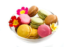 White bowl with colored macaroons. A white bowl with colored macaroons Royalty Free Stock Photos