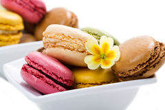 White bowl with colored macaroons. A white bowl with colored macaroons Royalty Free Stock Image