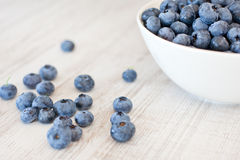 White bowl cup with fresh ripe blueberries Royalty Free Stock Images