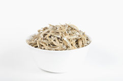 White bowl filled with dried anchovies Royalty Free Stock Images