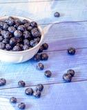 White bowl of fresh blueberries Royalty Free Stock Photos
