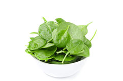 White bowl with fresh spinach isolated Royalty Free Stock Images