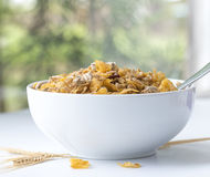 White Bowl of Mixed Breakfast Cereal. Stock Photography