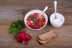 White Bowl of soup - borsch with parsley radish and bread Stock Images