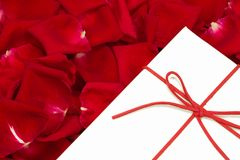 A white box and red rose petals. A white box surrounded by beautiful red rose petals stock images