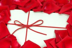 a white box and red rose petals royalty free stock image