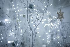 White branches, cobwebs and bokeh. White branches, cobwebs and lights in the background Stock Photography