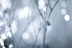 White branches, cobwebs and bokeh. White branches, cobwebs and lights in the background Royalty Free Stock Image