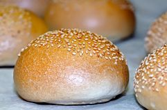 White bread loaves sprinkled with sesame seeds. Small depth of sharpness royalty free stock photography