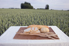 White bread on table and summer wheat field Stock Photo