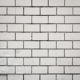 White brick wall background Stock Images