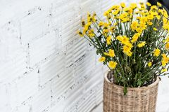 White brick wall with the flower basket interior Stock Photography