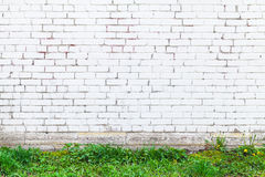 White brick wall and fresh green grass Stock Images