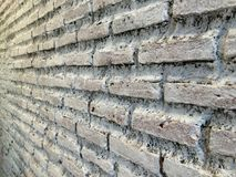 White brick wall. Perspective rough white brick wall Royalty Free Stock Photo