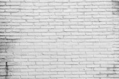 A white brick wall Stock Photography
