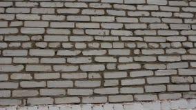 White brick wall. Steadicam stock video
