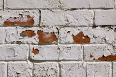 White brick wall texture Stock Image