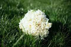 White bridal bouquet on green grass Royalty Free Stock Image