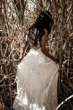 White bridal dress with beautiful romantic young woman in sugar cane field Royalty Free Stock Photos