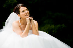 White Bride stock images