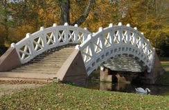 White Bridge. A bridge with a white railing and a swan on an unusually mild mid-November day in a park in southern Germany Royalty Free Stock Image