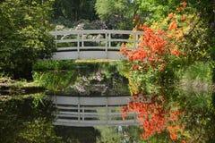 White Bridge With Azaleas Royalty Free Stock Image